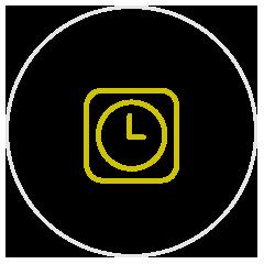 Richiesta appuntamento - icona orario