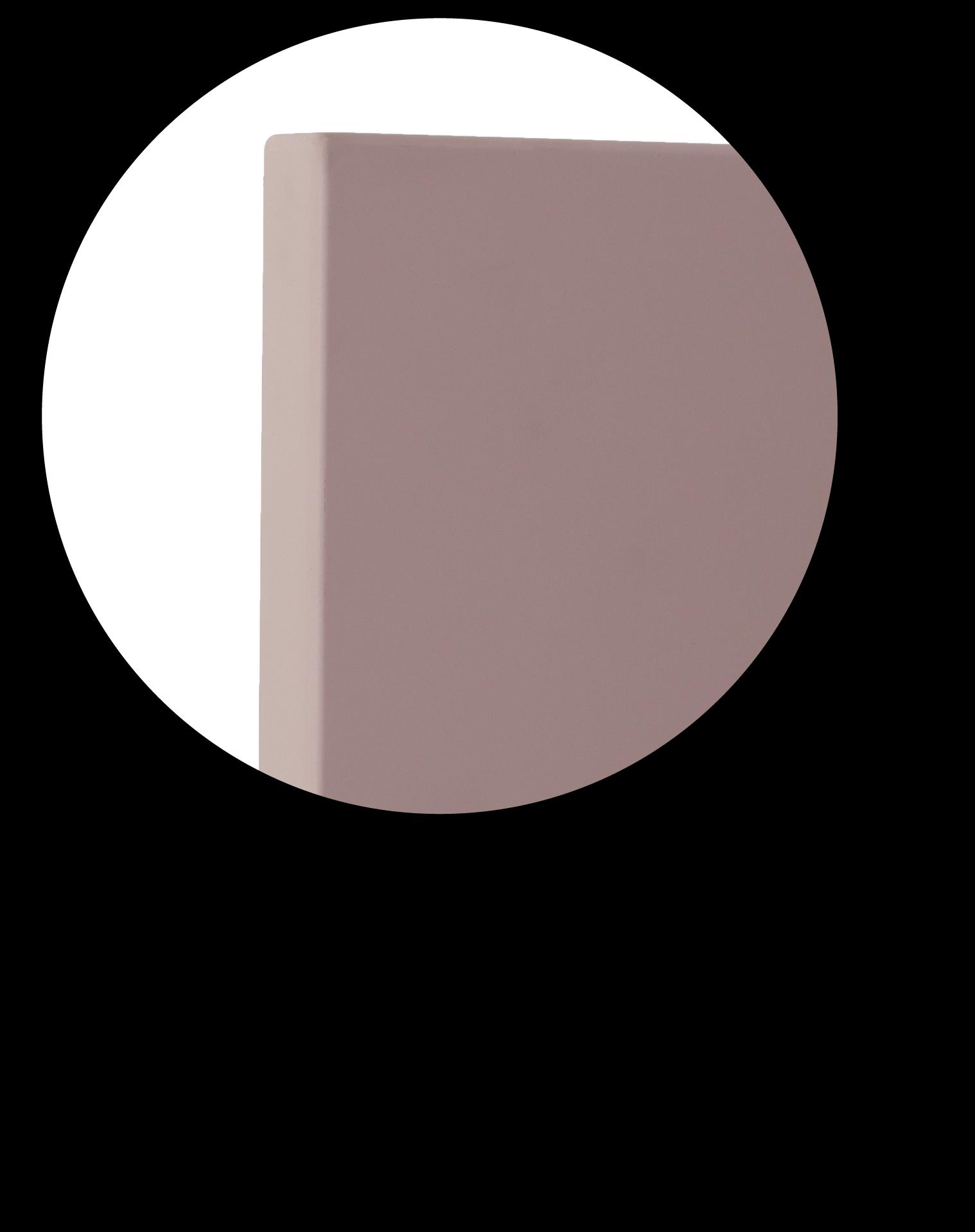 Anta polimerica